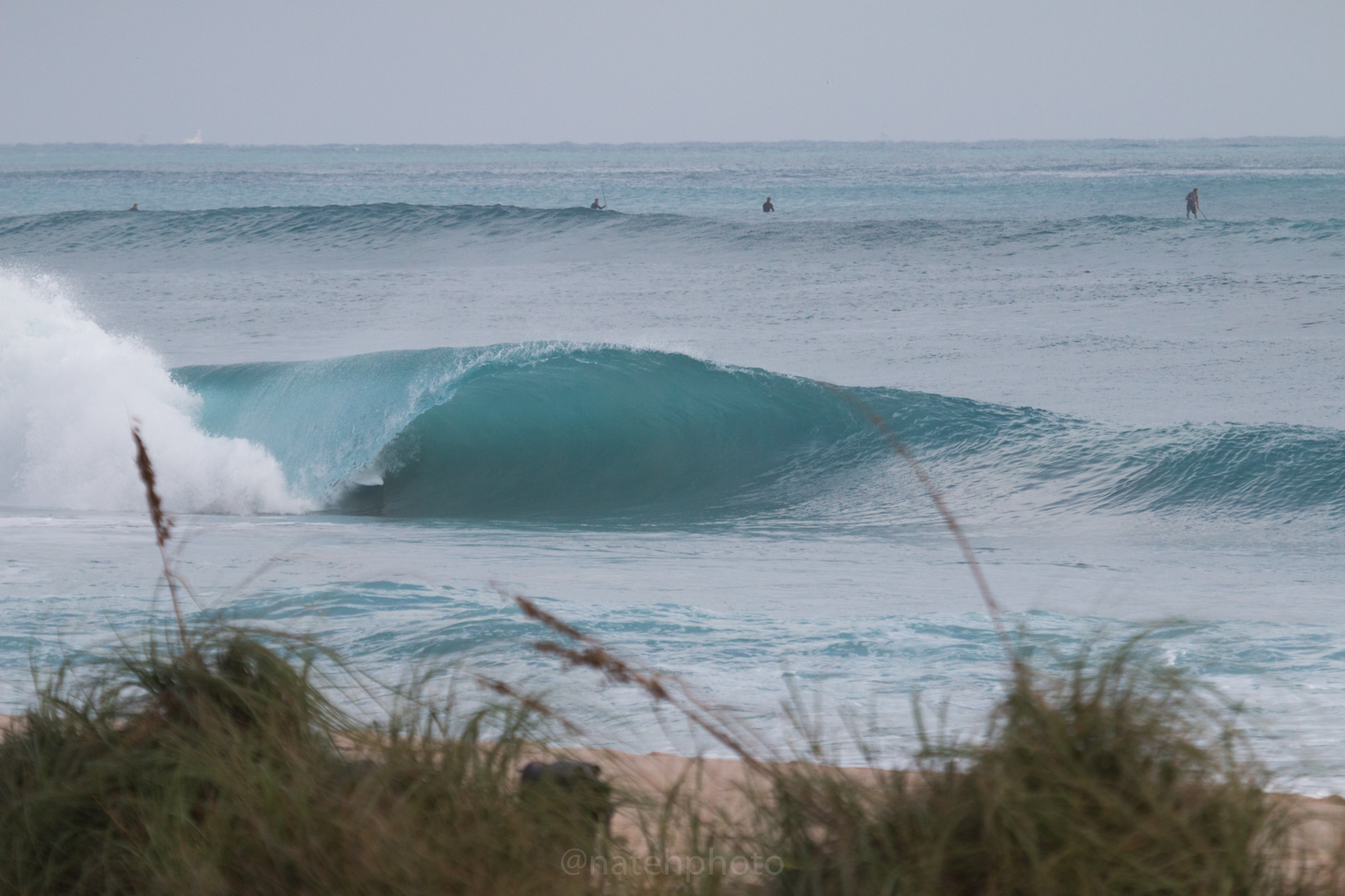JanuarySwell_ReefRoad_Florida_natehphoto-4167.jpg