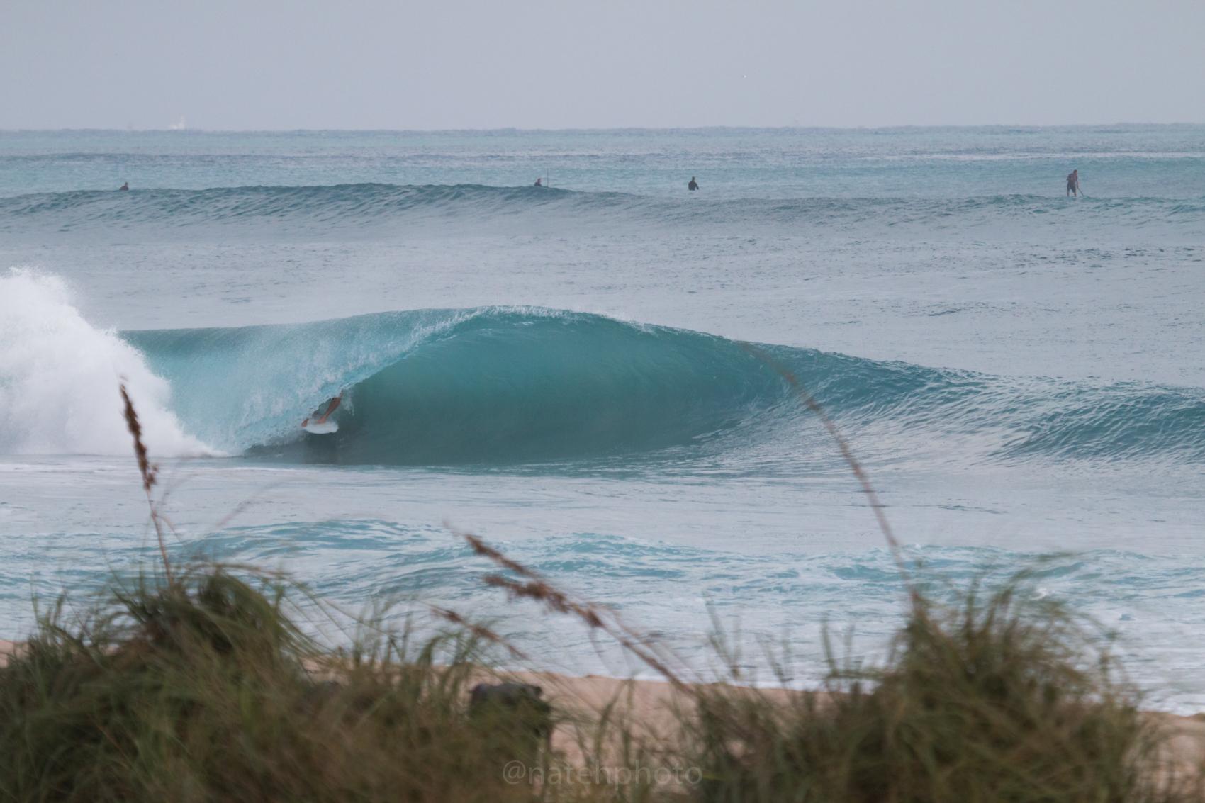 JanuarySwell_ReefRoad_Florida_natehphoto-4166.jpg