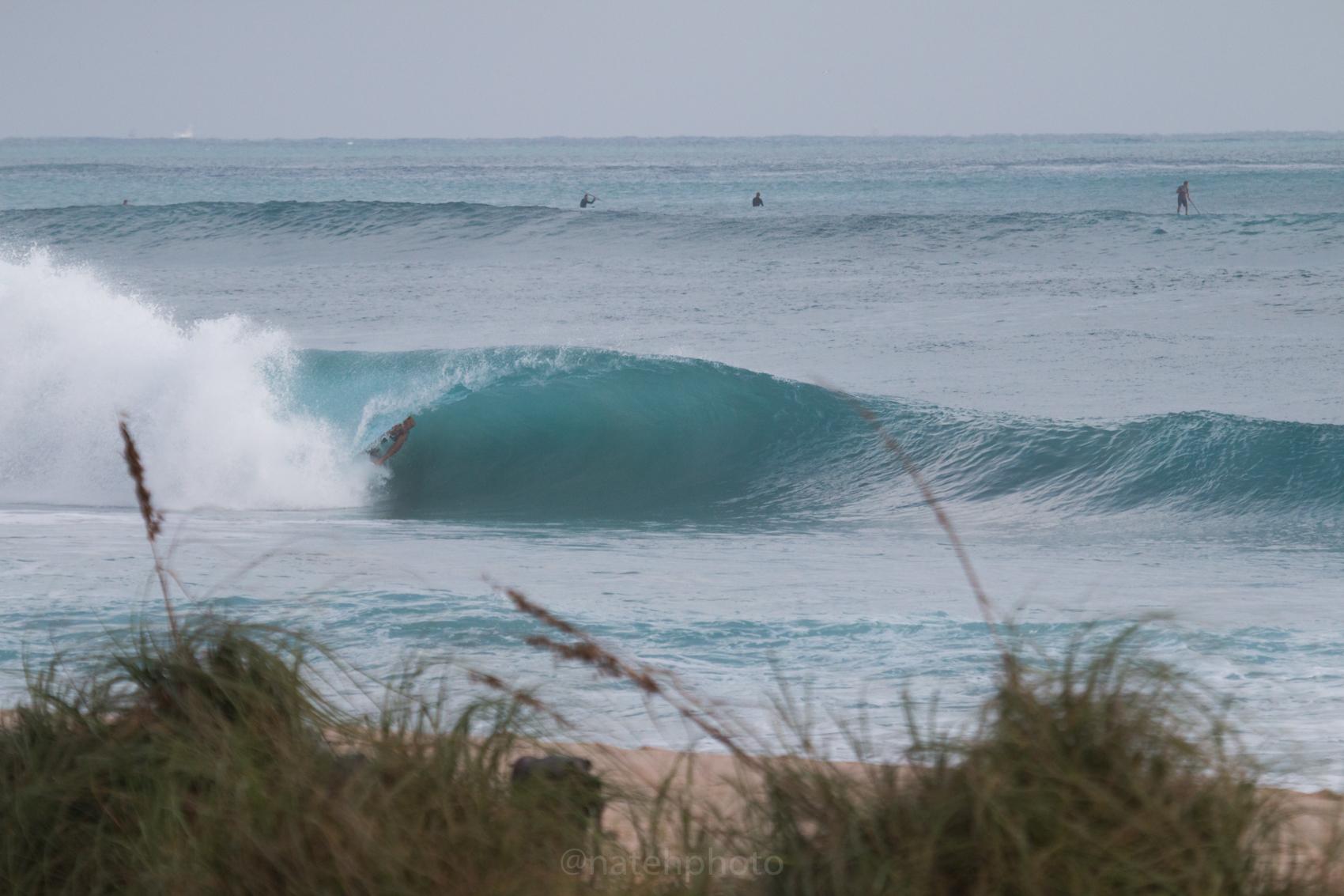 JanuarySwell_ReefRoad_Florida_natehphoto-4169.jpg