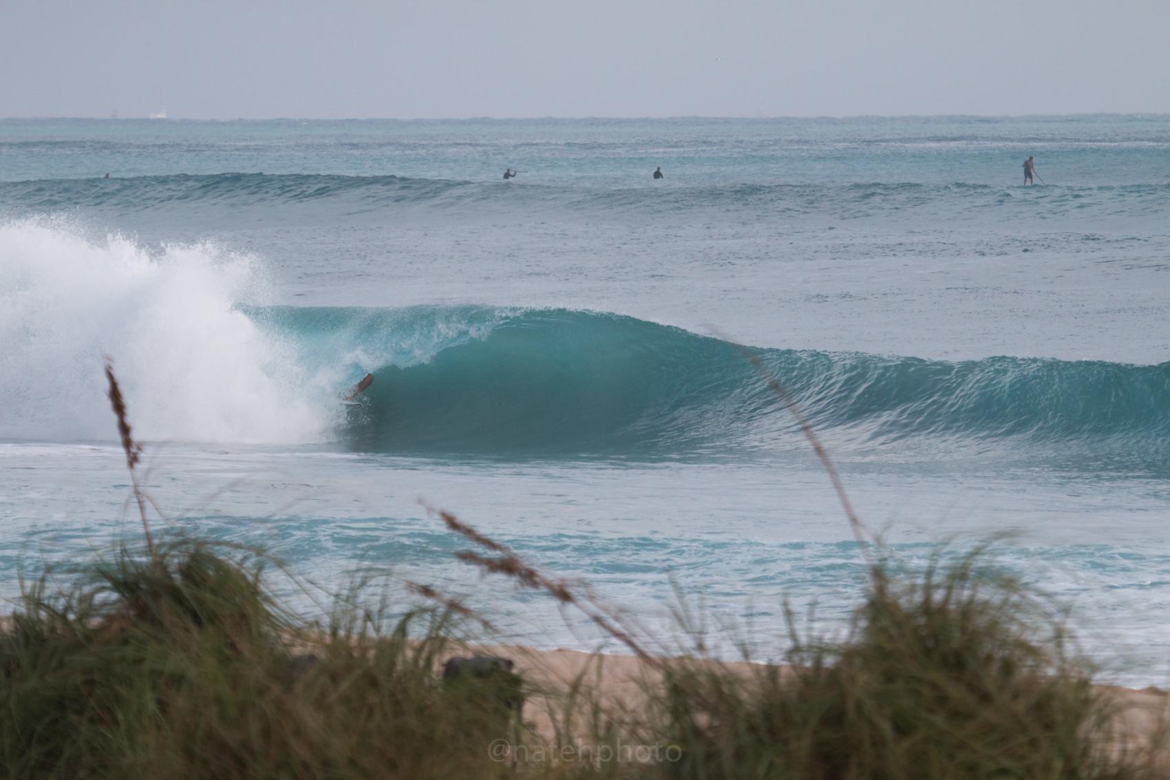 JanuarySwell_ReefRoad_Florida_natehphoto-4170.jpg