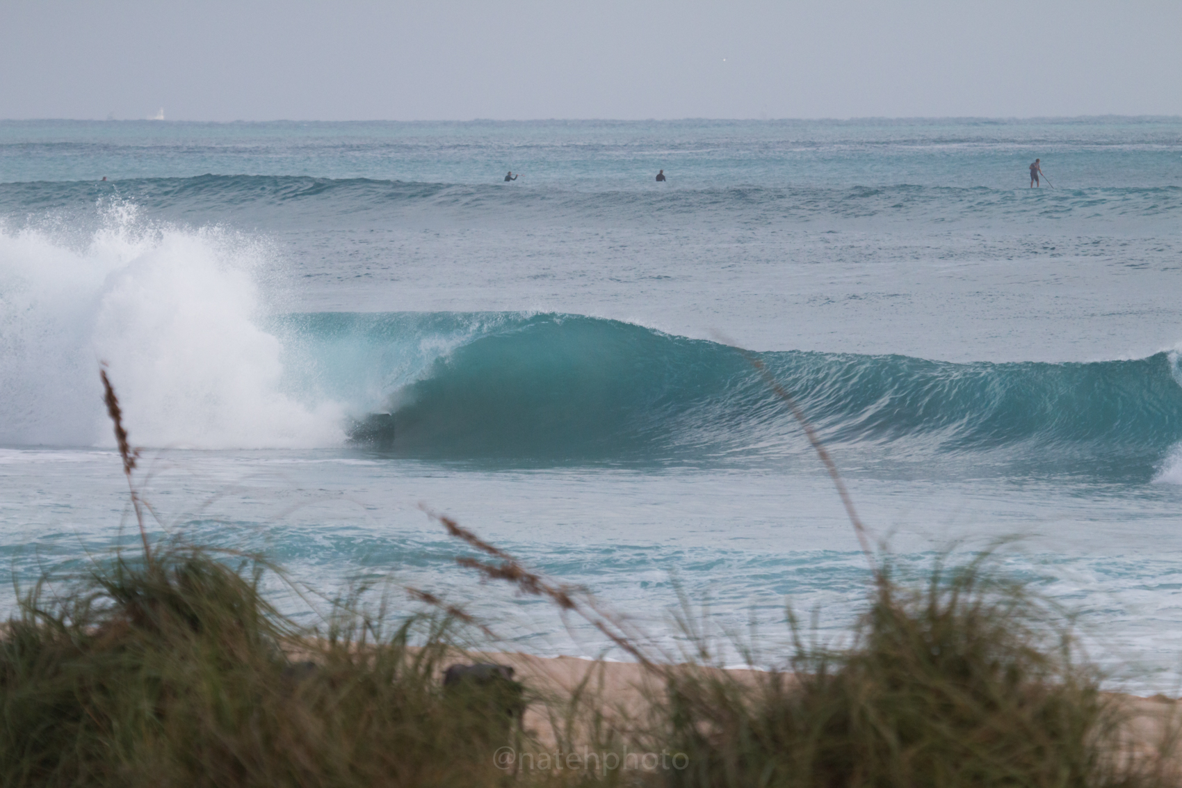 JanuarySwell_ReefRoad_Florida_natehphoto-4171.jpg