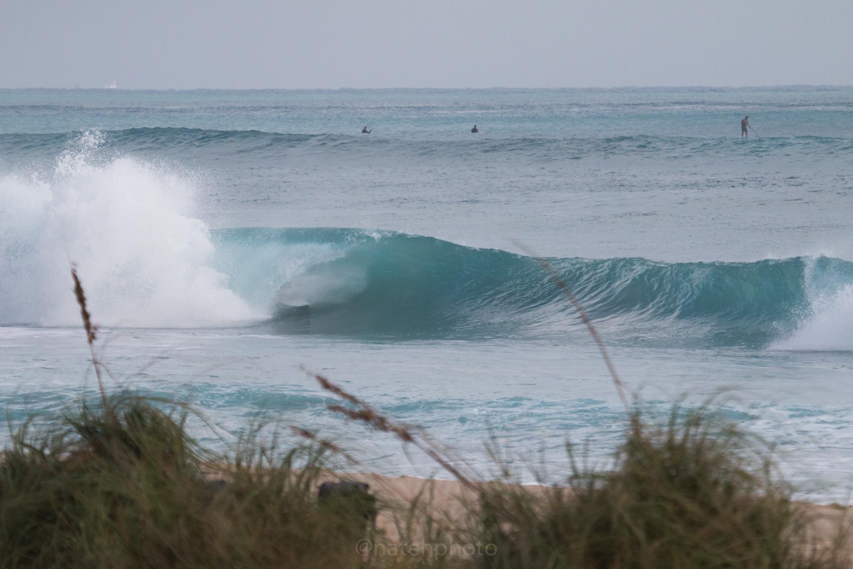 JanuarySwell_ReefRoad_Florida_natehphoto-4172.jpg
