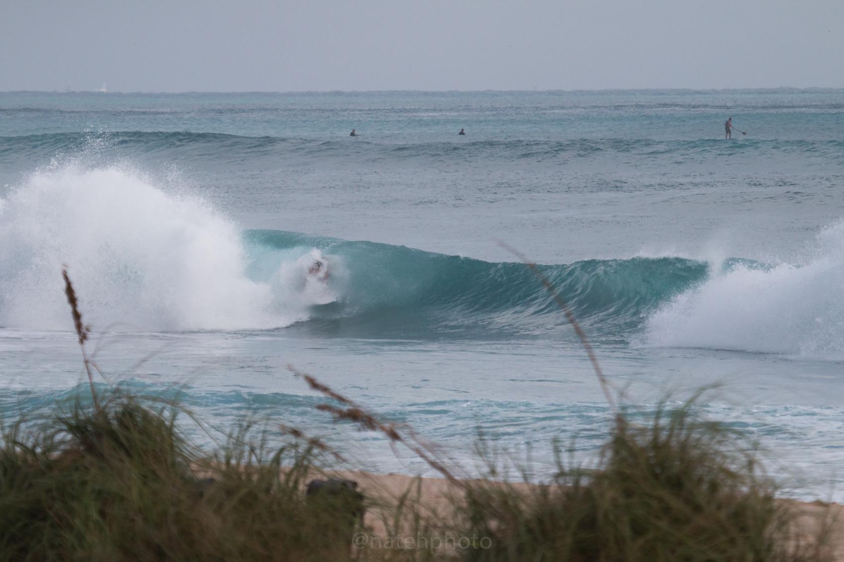 JanuarySwell_ReefRoad_Florida_natehphoto-4173.jpg