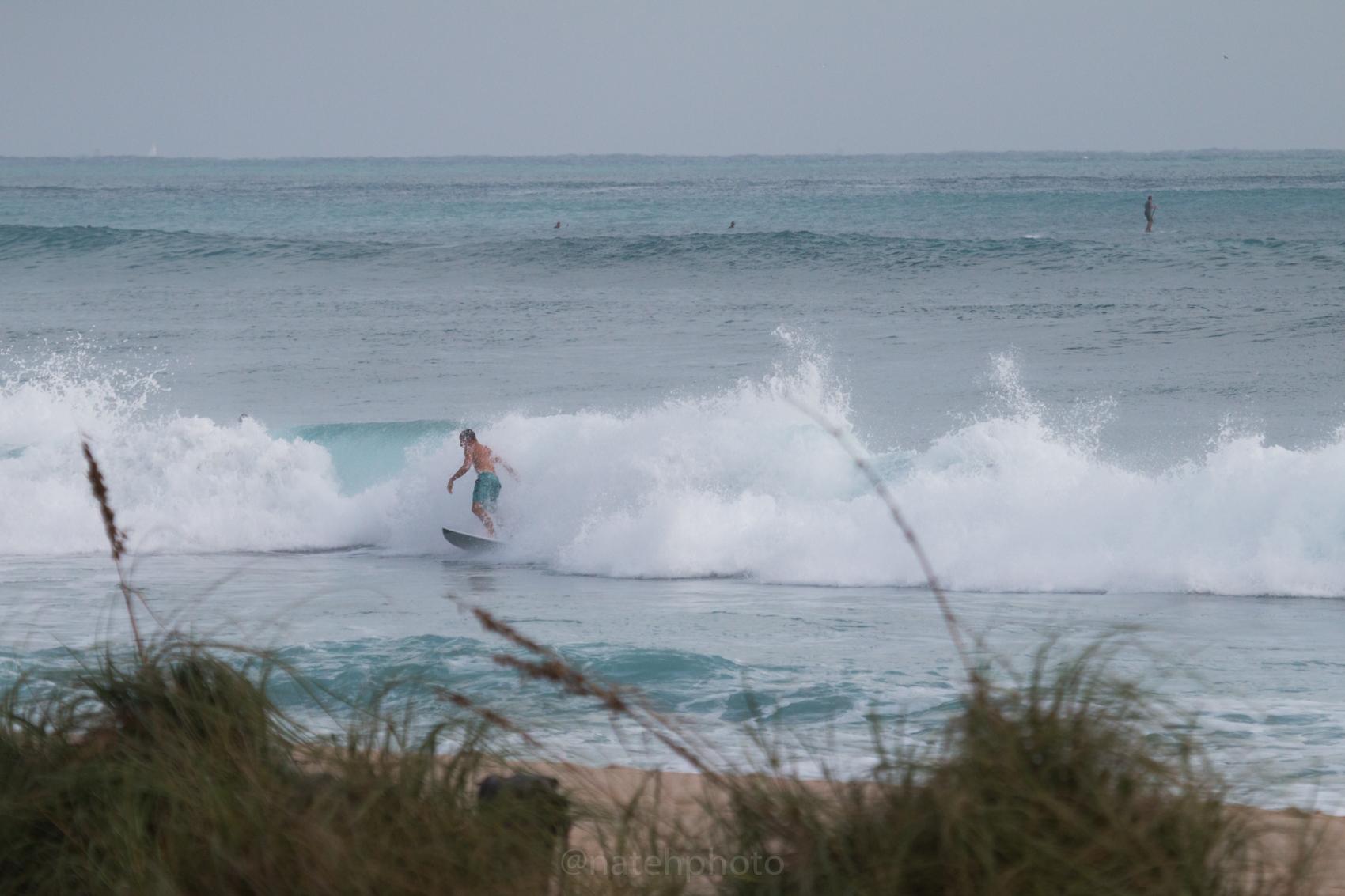 JanuarySwell_ReefRoad_Florida_natehphoto-4175.jpg