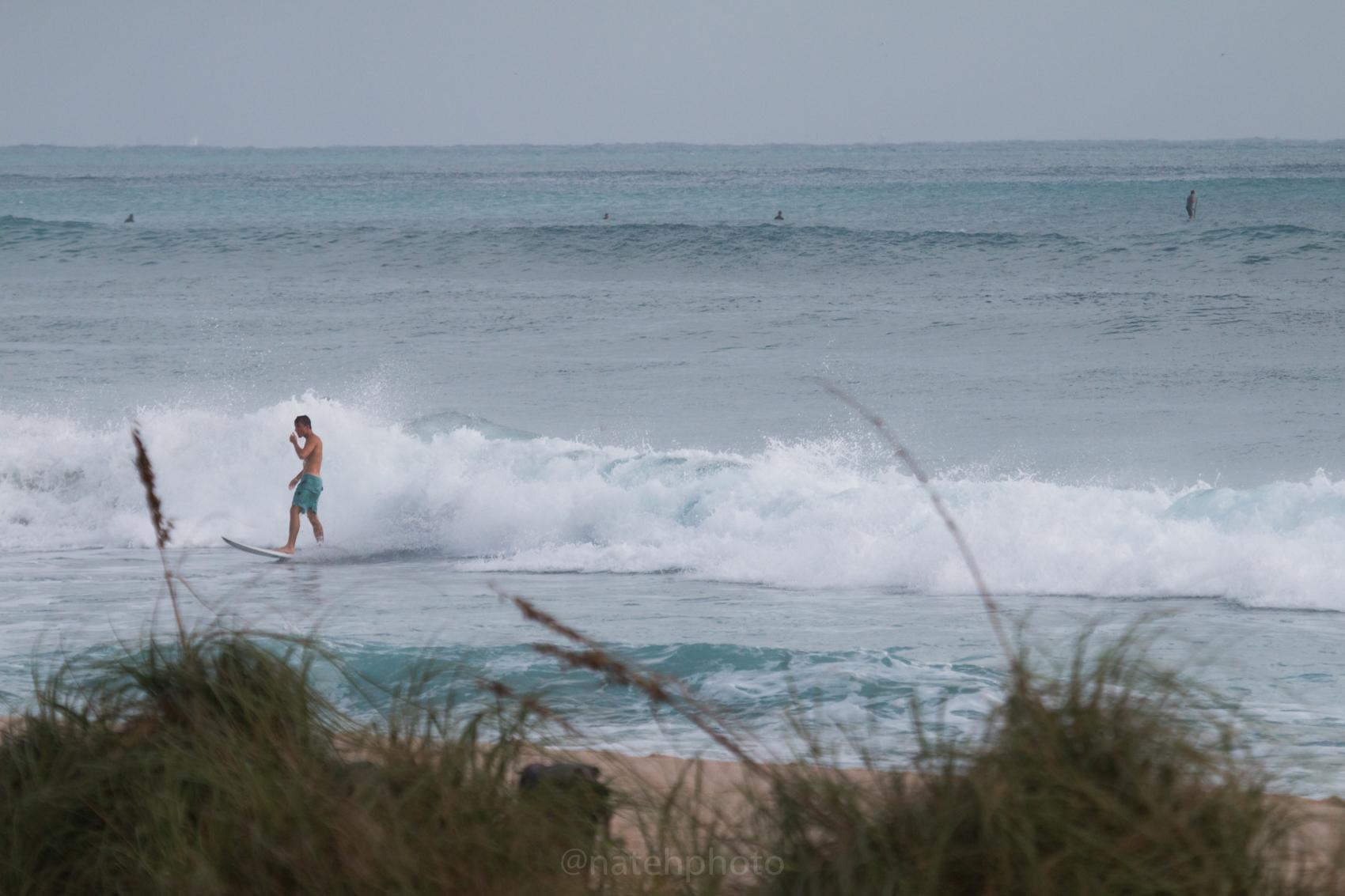JanuarySwell_ReefRoad_Florida_natehphoto-4176.jpg