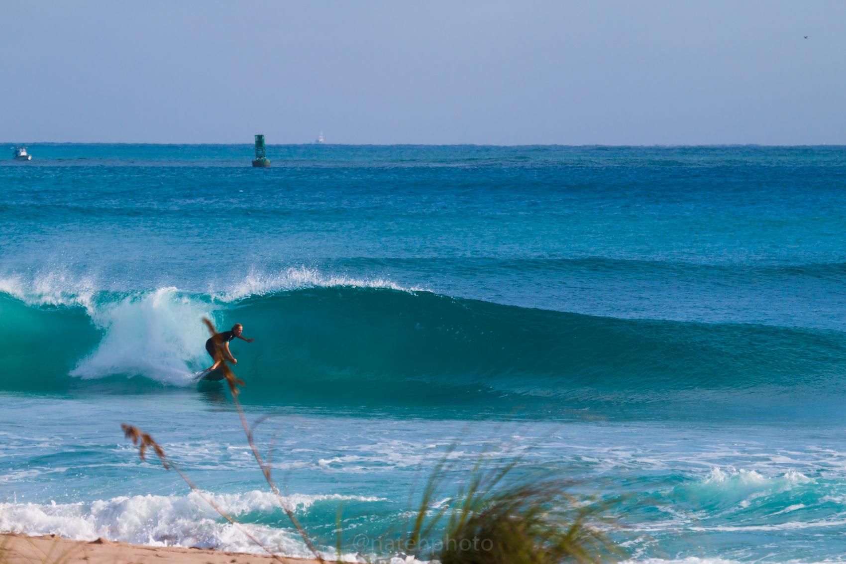JanuarySwell_ReefRoad_Florida_natehphoto-4261.jpg