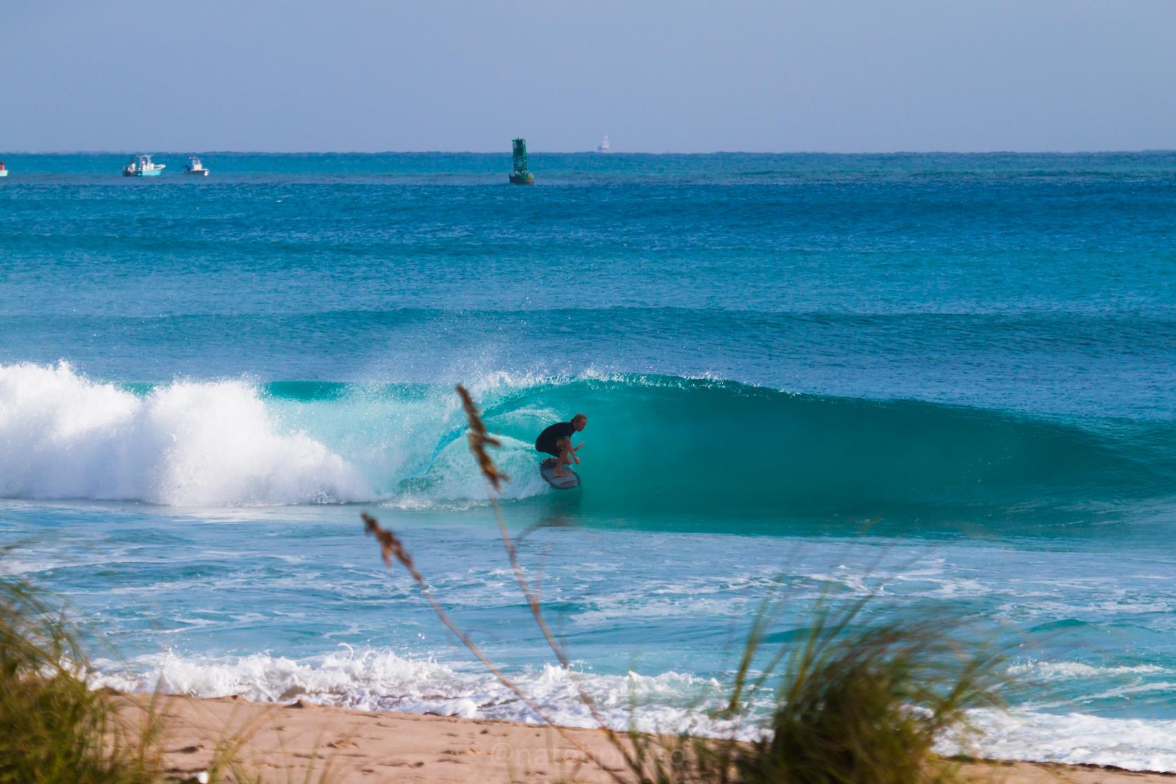 JanuarySwell_ReefRoad_Florida_natehphoto-4267.jpg