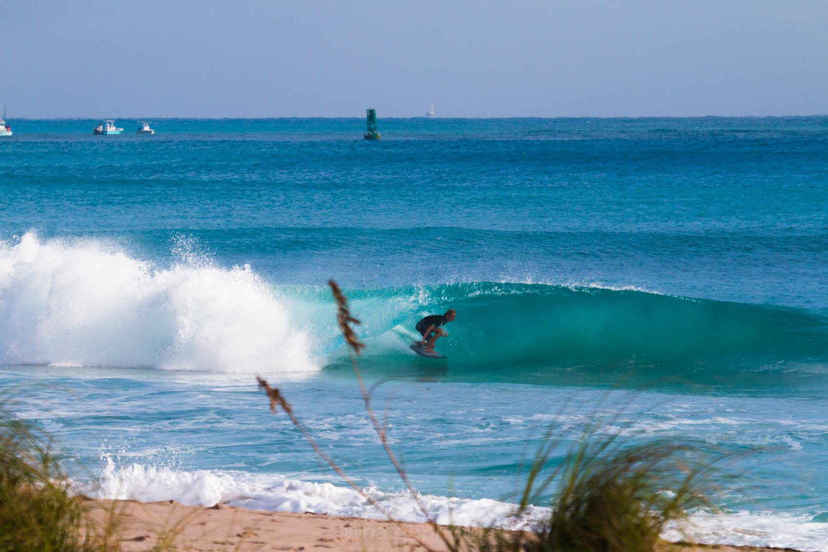 JanuarySwell_ReefRoad_Florida_natehphoto-4270.jpg