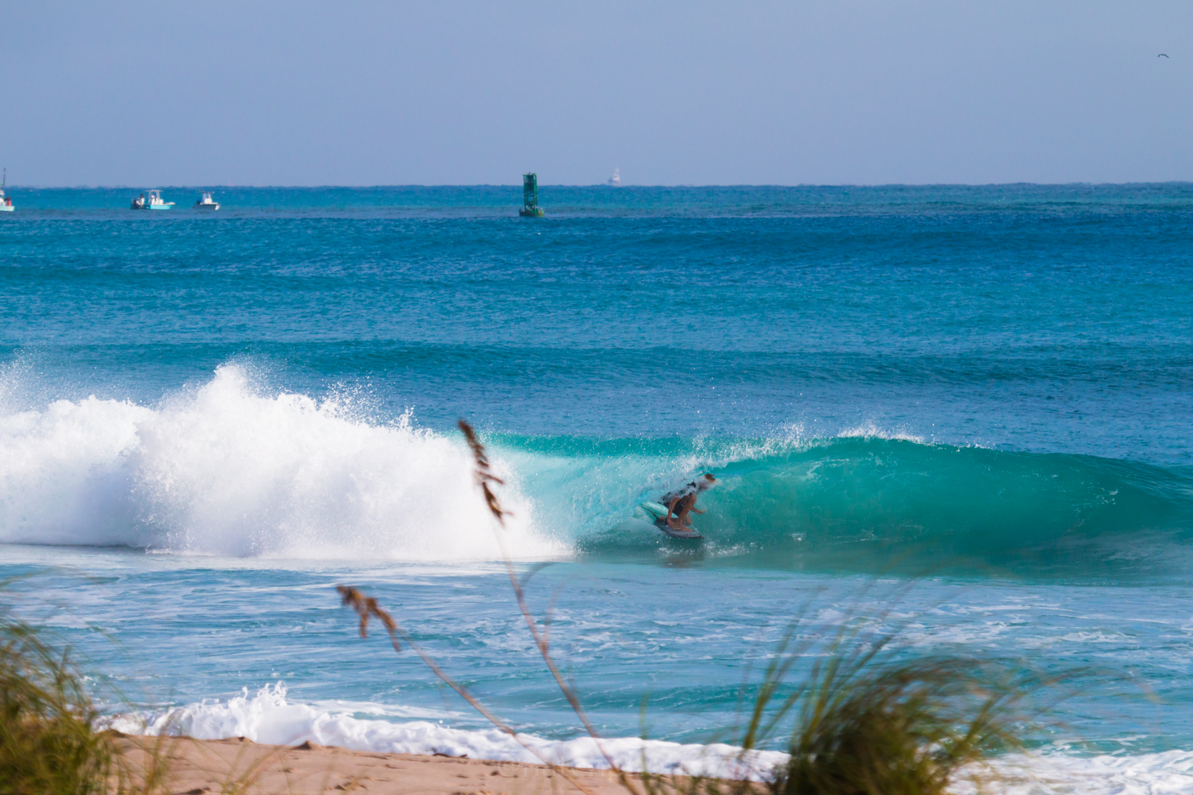 JanuarySwell_ReefRoad_Florida_natehphoto-4273.jpg