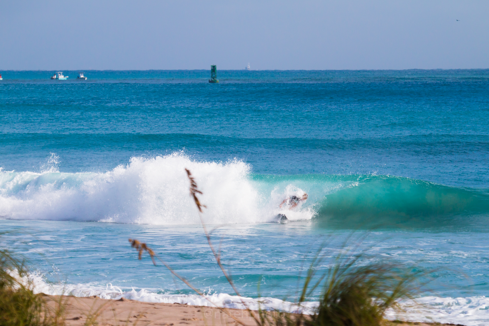 JanuarySwell_ReefRoad_Florida_natehphoto-4276.jpg