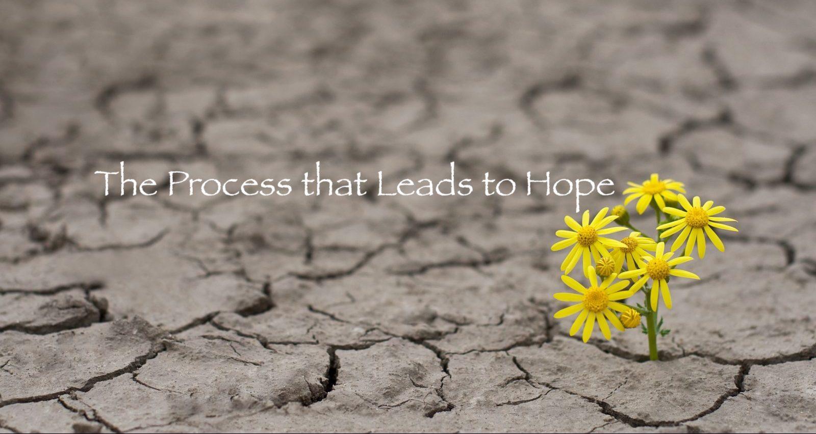 flower-hope-earth-climate-change-e1493332891171.jpeg