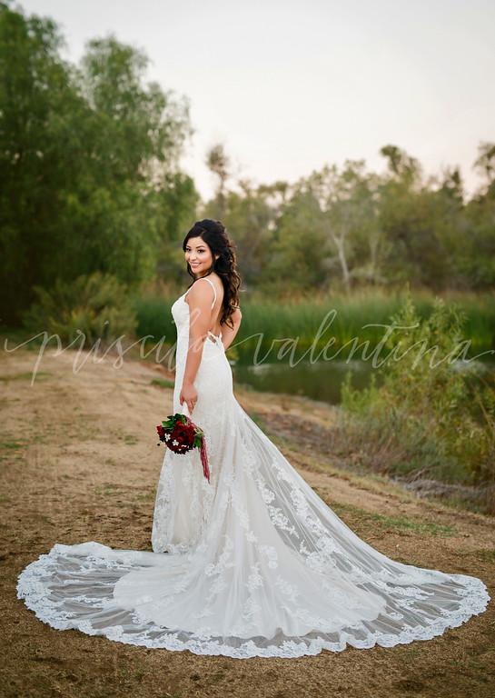 Cardenas Wedding Photos (Large) (187 of 859)-XL.jpg