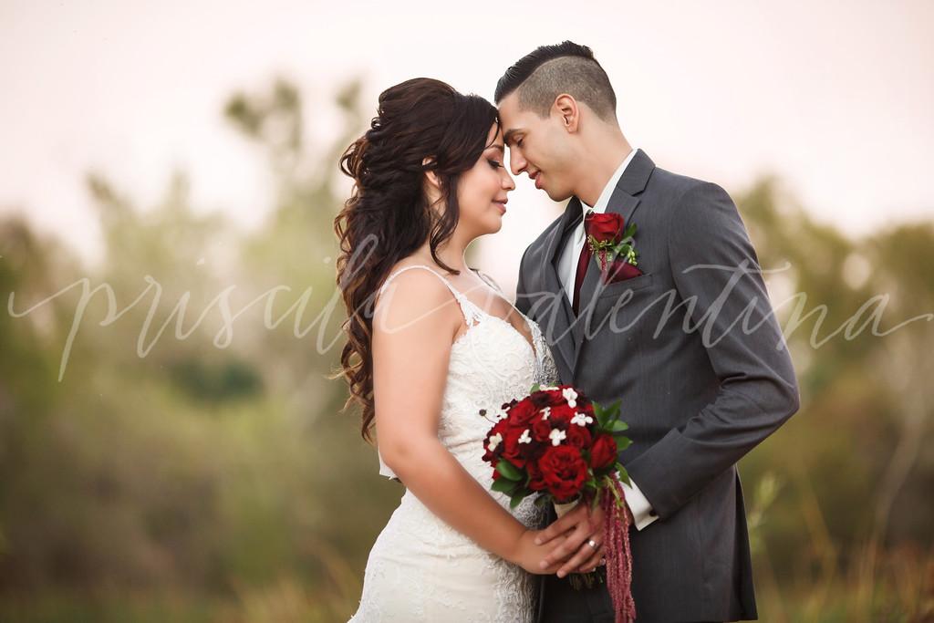 Cardenas Wedding Photos (Large) (536 of 859)-XL.jpg
