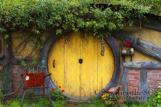 I feel like I could just walk right in. However, only one of the doors in all The Shire actually opens to reveal...well, you'll have to visit for yourself to find out!