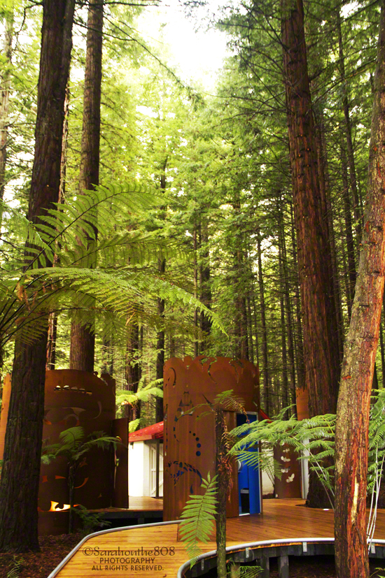 Eco-friendly restrooms located next to the visitor centre.