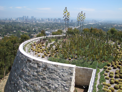 I admire the gardener tasked with taking care of this cactus garden—ouch! The Getty, Los Angeles 2011