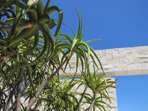 Admiring more of the garden at The Getty, Los Angeles 2011