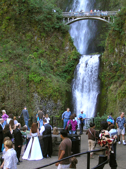 Back at the base of Multnomah Falls, I came across a wedding party—so sweet!