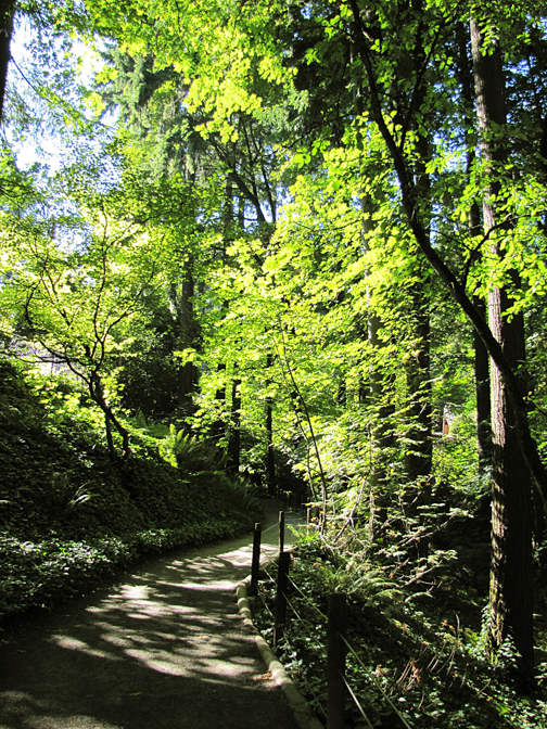 The Portland Japanese Garden is a peaceful escape into nature.