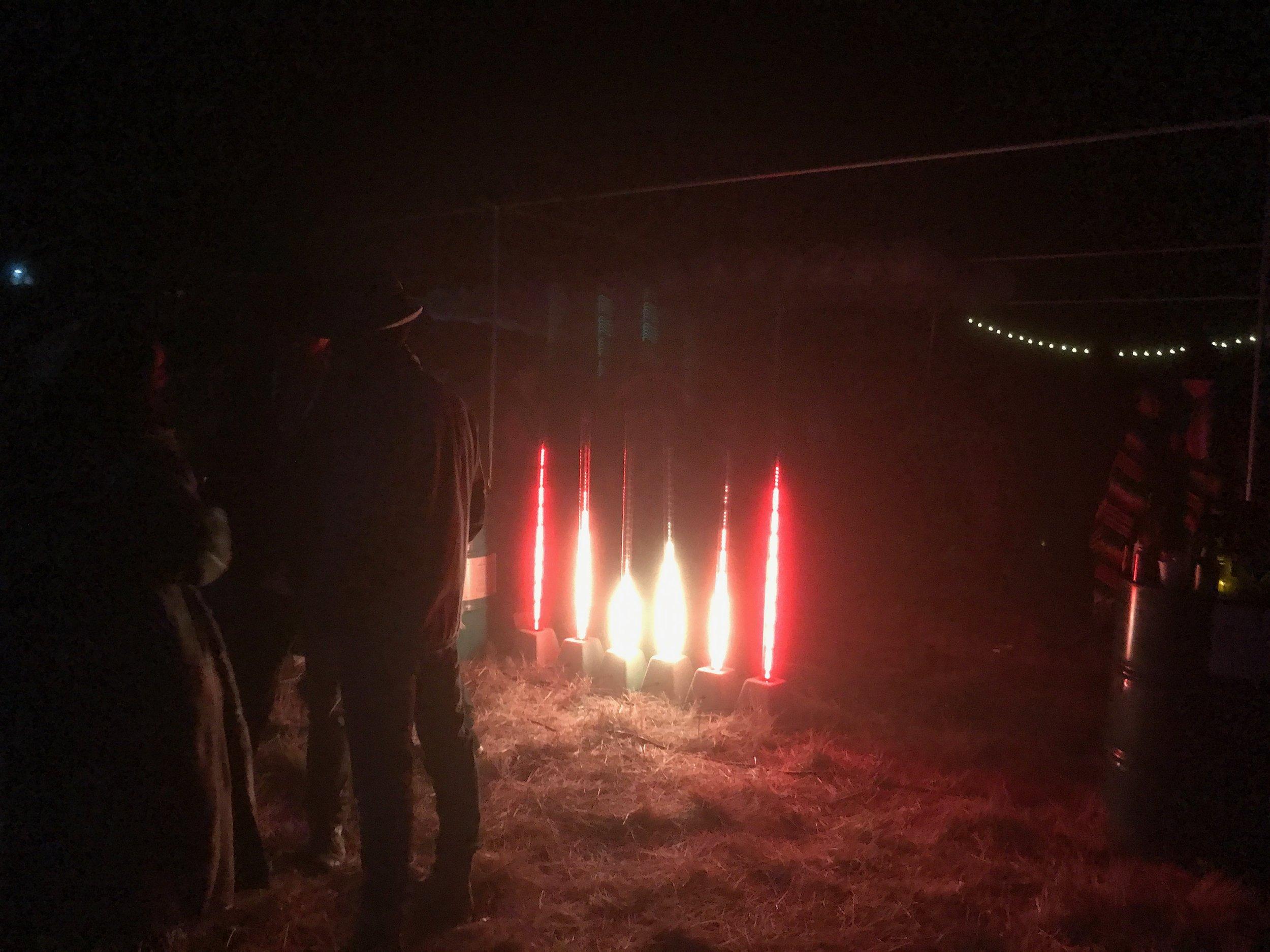 Foxfire at Dyad 2017