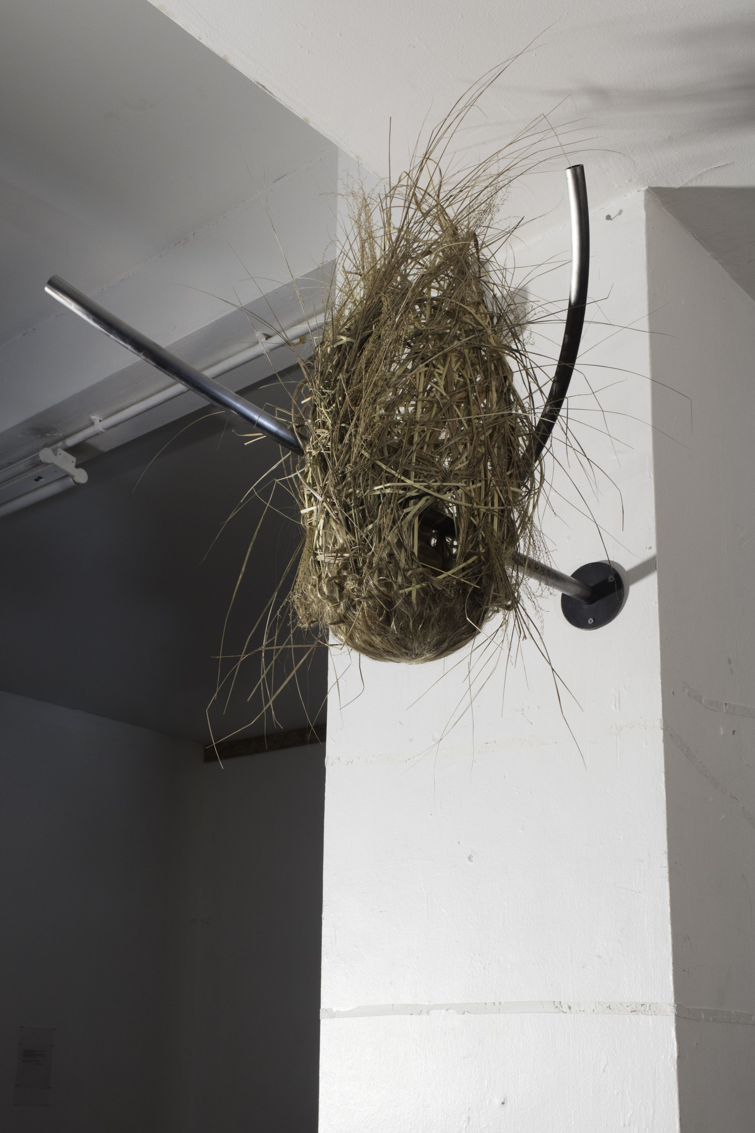 chimera nest reeds, grass, twigs, wig, resin, waxed steel