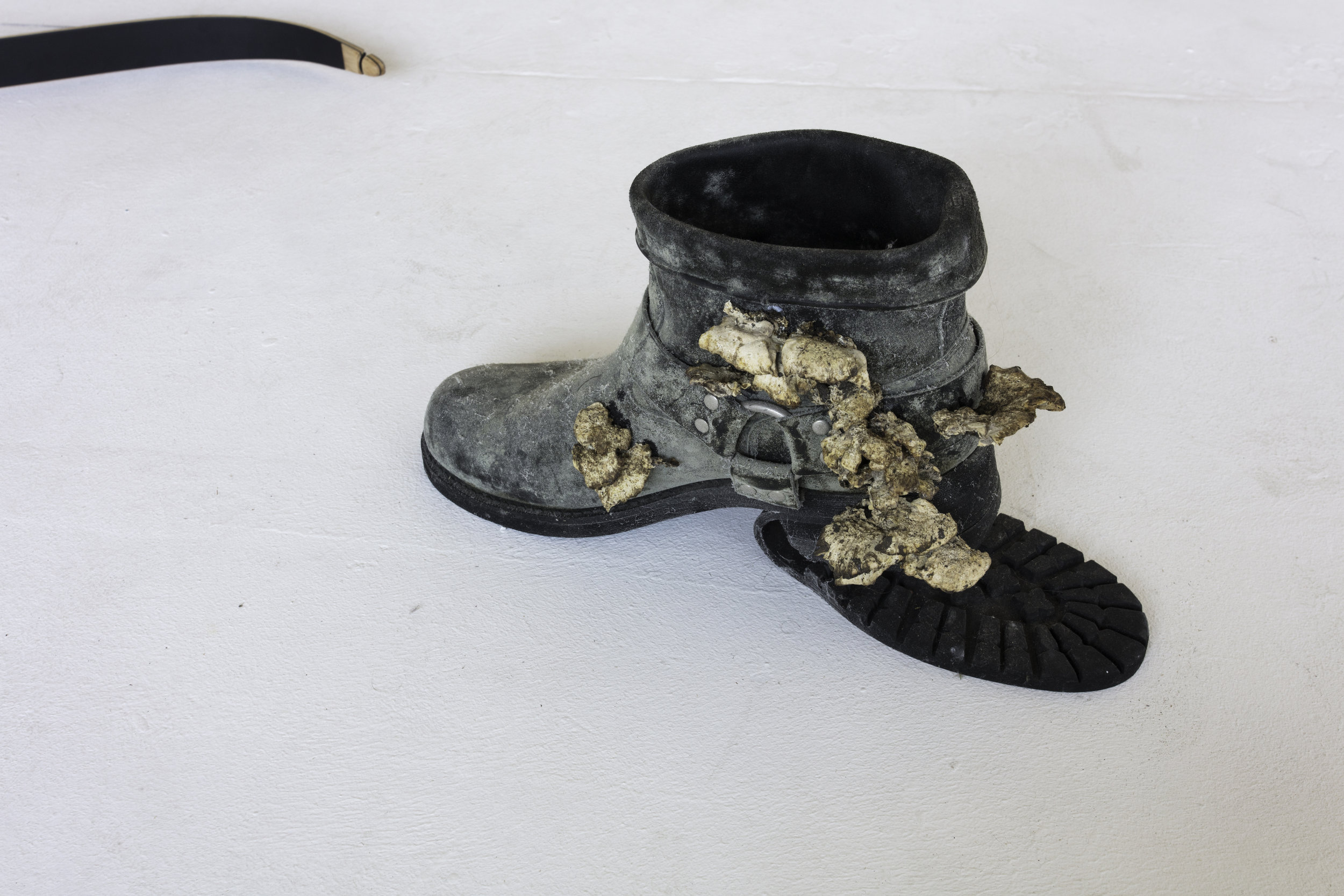 regression of men         artist's leather boots, mold, wood-ear mushrooms
