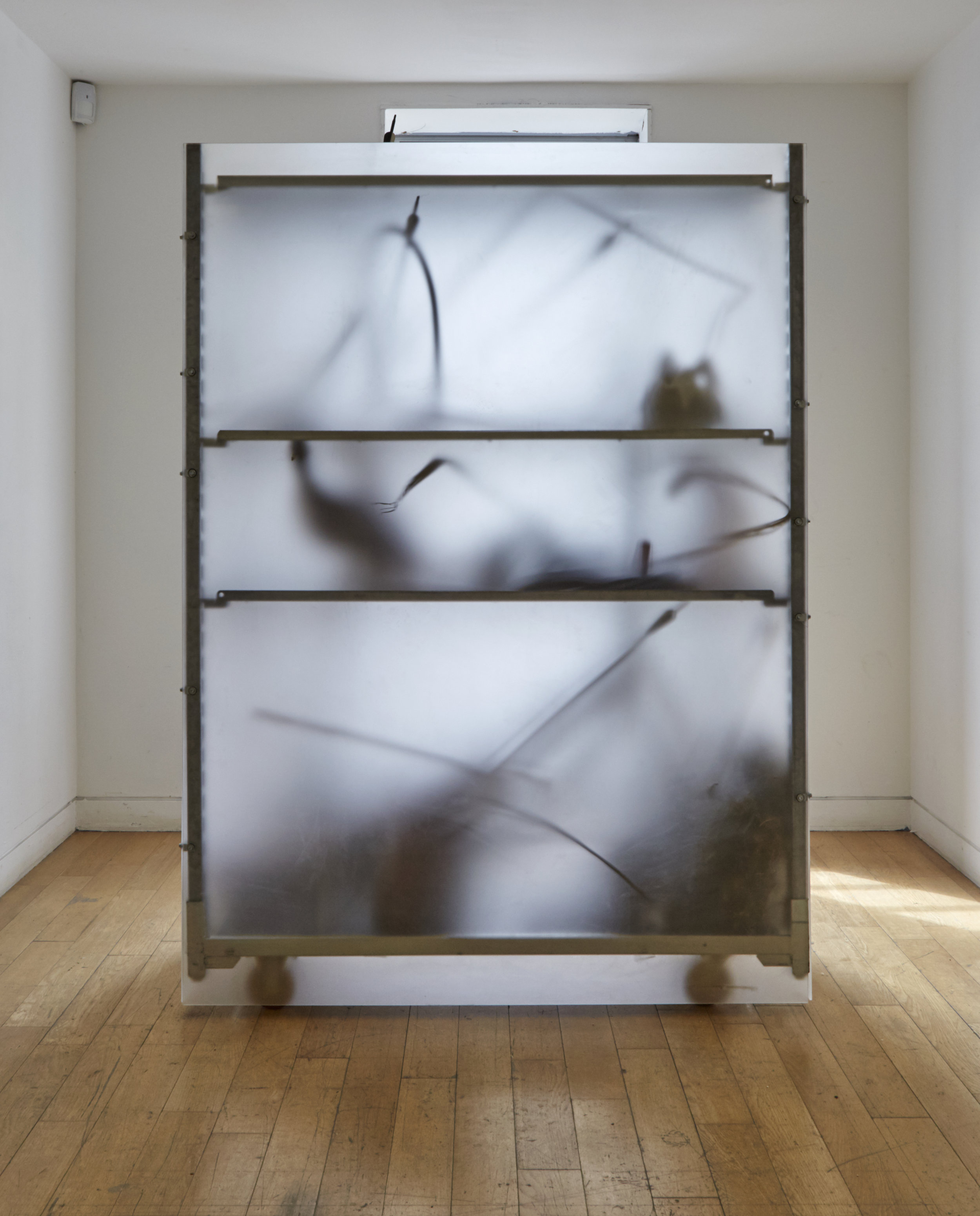 'fiction', steel shelf, casters, perspex, concealed objects