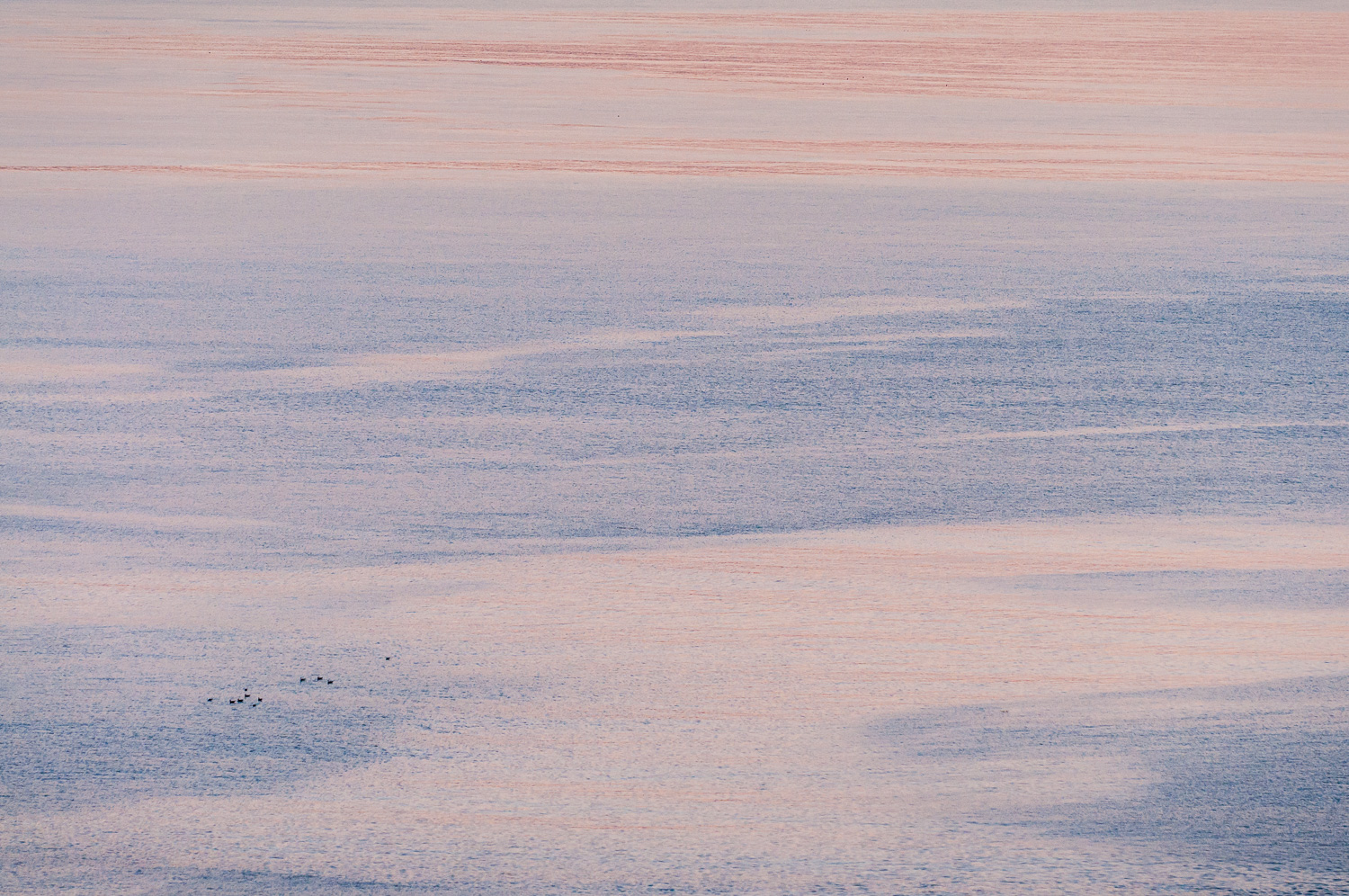 Sunset colours reflected in calm water - Island Bay in a peaceful moment.  Even the seabirds were still.