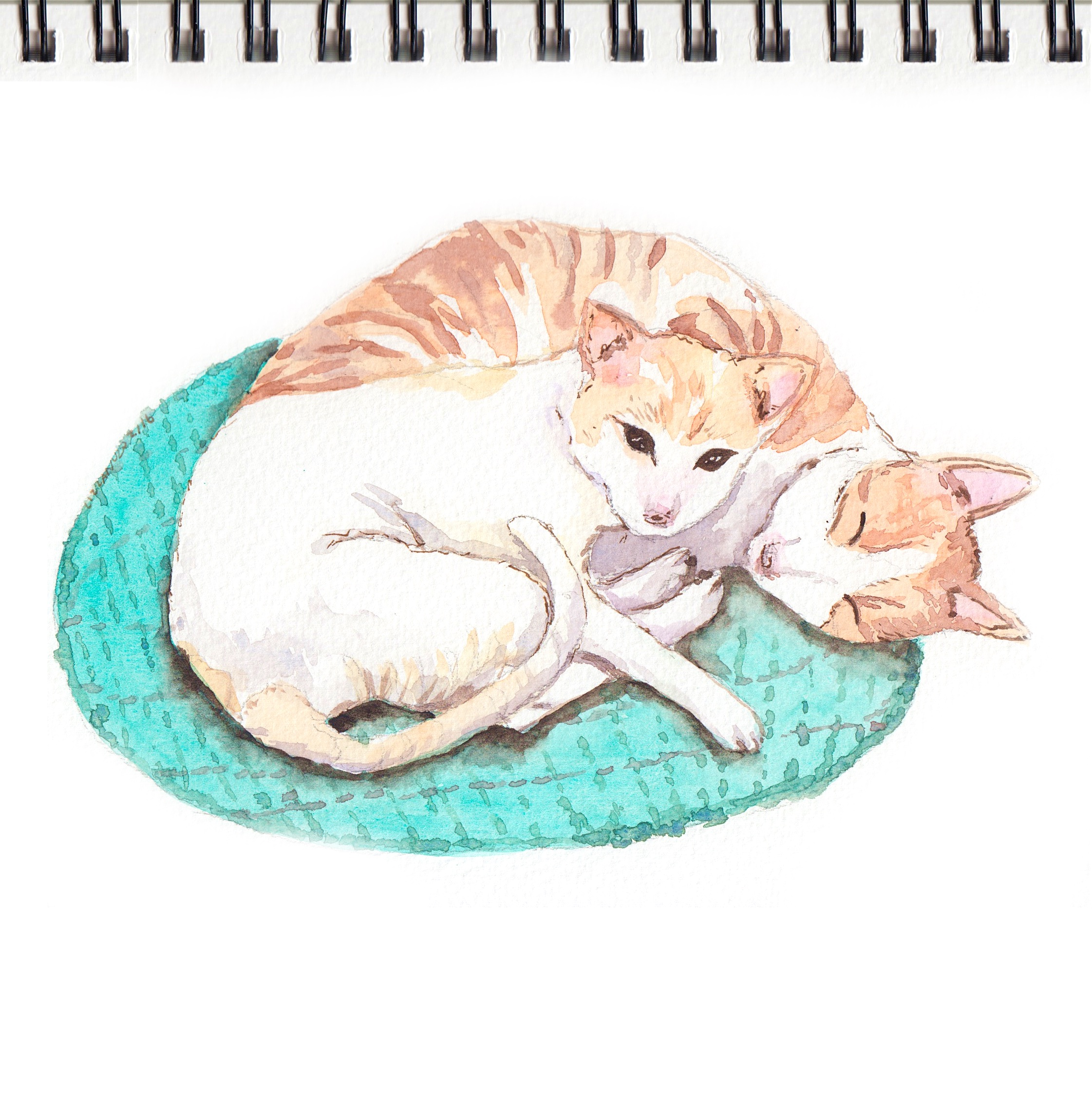 Cats on a teal rug / Watercolor on paper by Liz Lanuzo