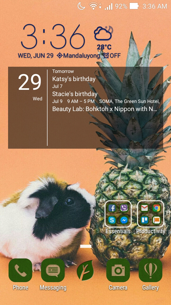 CUSTOMIZED HOME SCREEN. I'm currently using the Earth Day icon pack (free from Zen UI) and this cute photo I found in their extensive Wallpaper collection. Clock and weather widget comes with the phone while the calendar is by Simple Calendar.