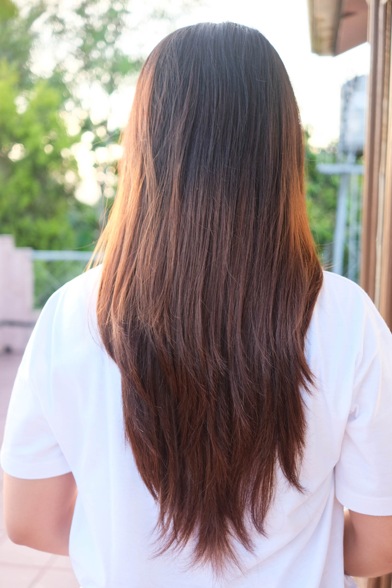 My hair before dip-dyeing