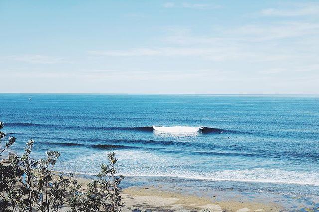 A secret oasis amongst the mayhem 🙏 Australia 2019