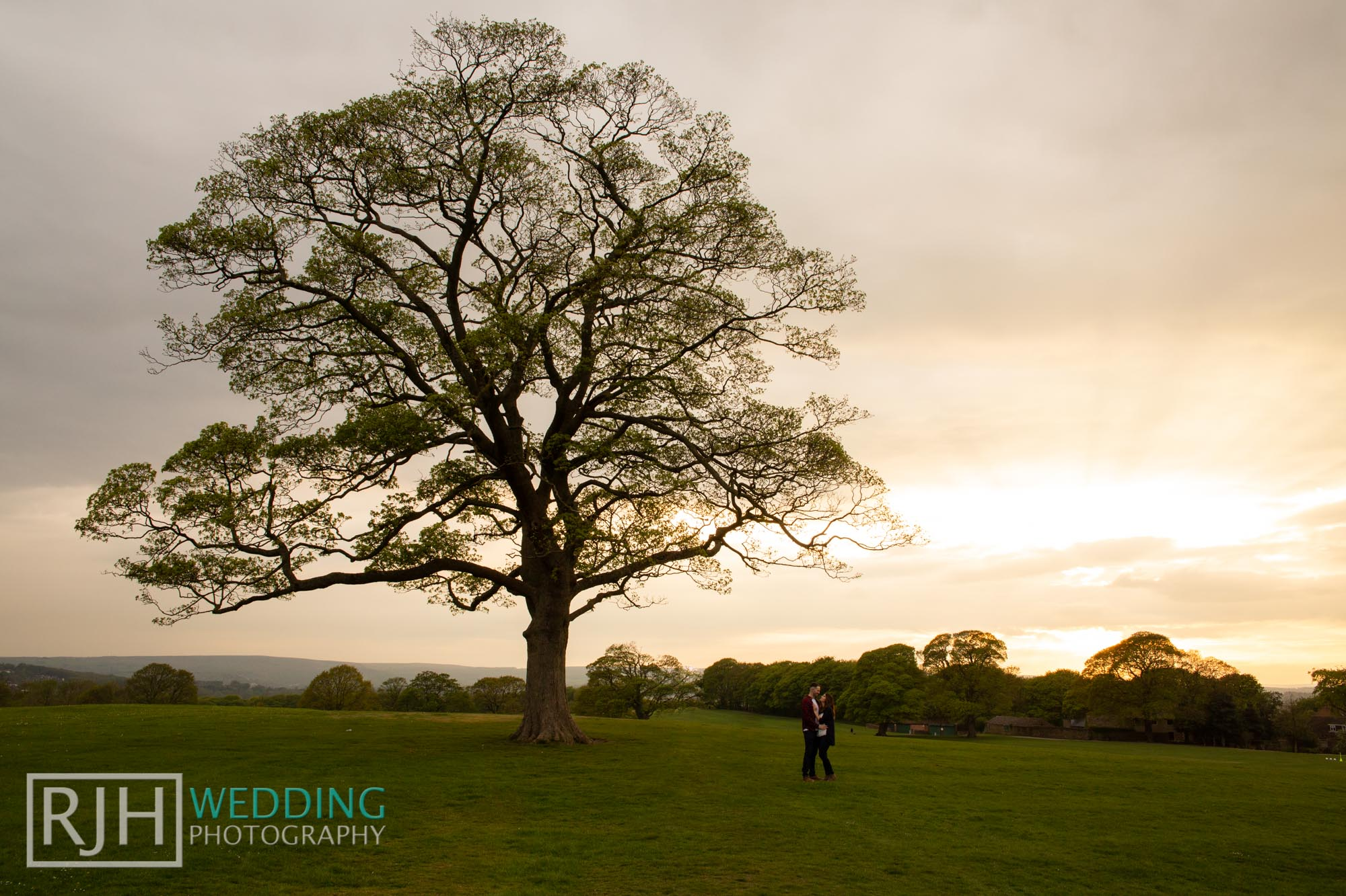 Pre-wedding photography_Abbie & Reece_Graves Park_027_3C2A9378.jpg