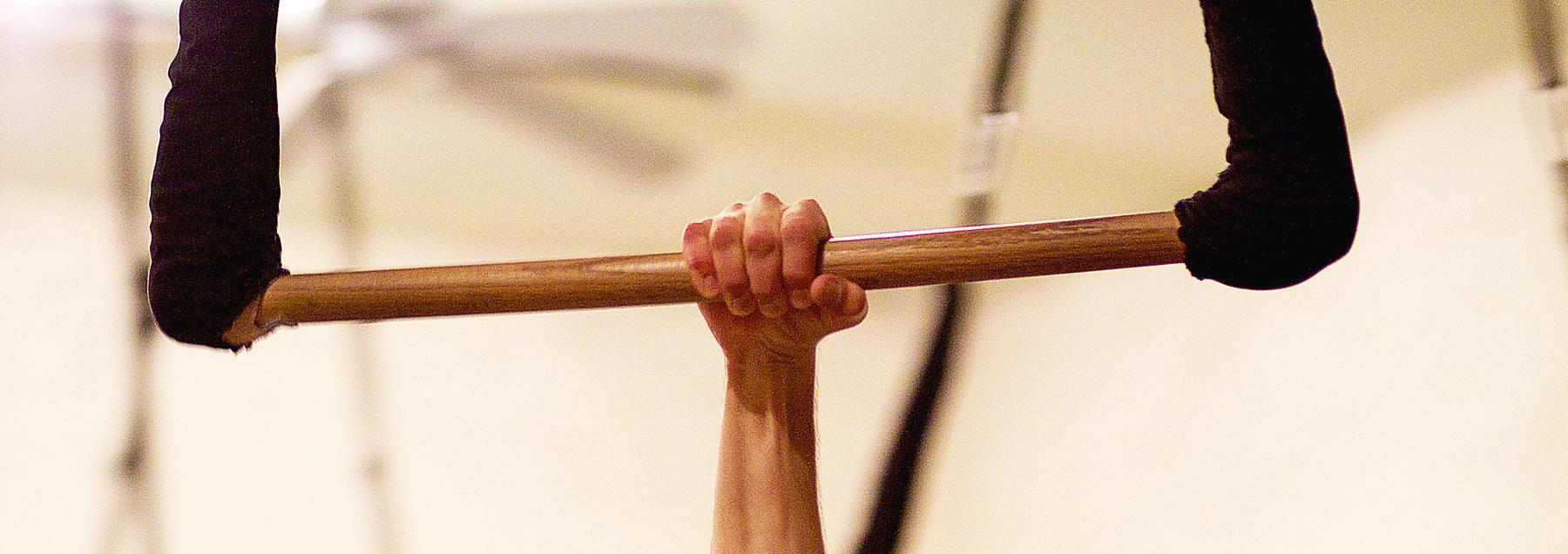 ArmGripTrap.jpg