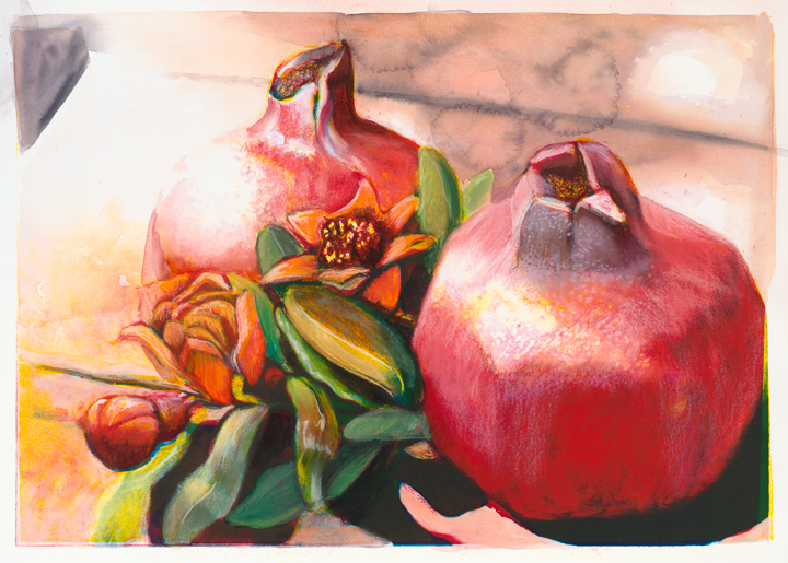 Two Pomegranates with Blossoms