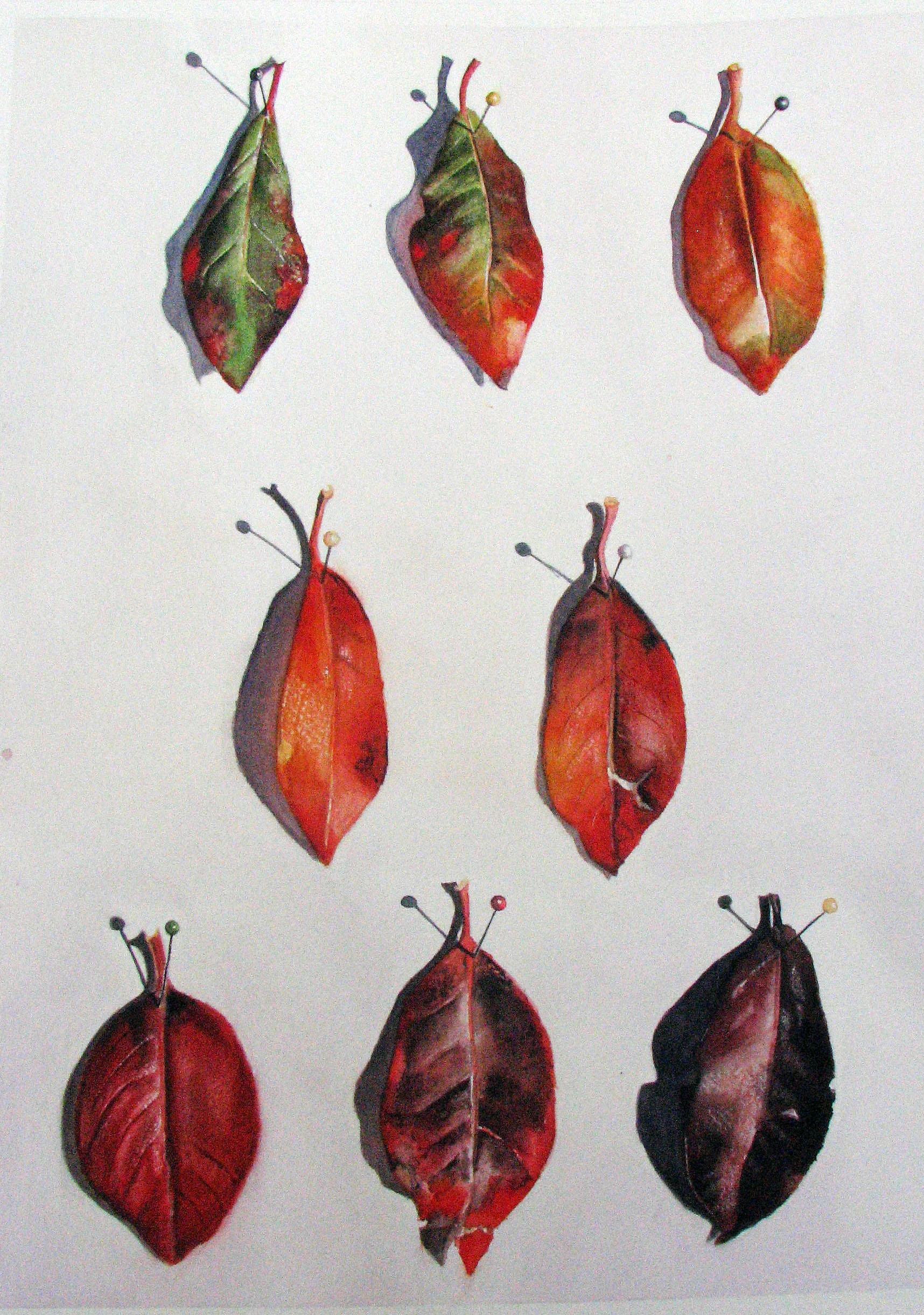 Season of Leaves