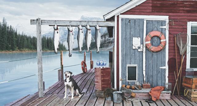 Salmon Oil - Maine Coast_187_CMYK 2.jpg
