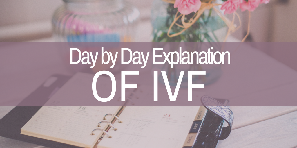 day by day explanation of IVF