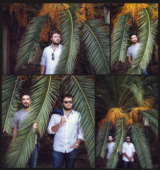 Emily Wilson Photography Rome Italy tree gianicolo hill