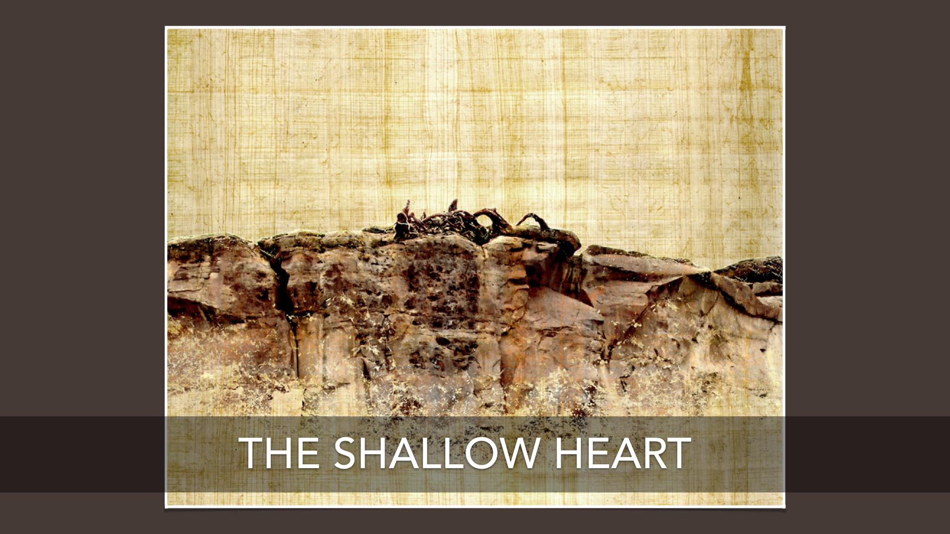 Shallow Heart