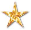 GoldStarforweb.jpg