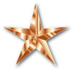 BronzeStarforweb.jpg