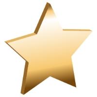 bronzestar-01 (2).jpg