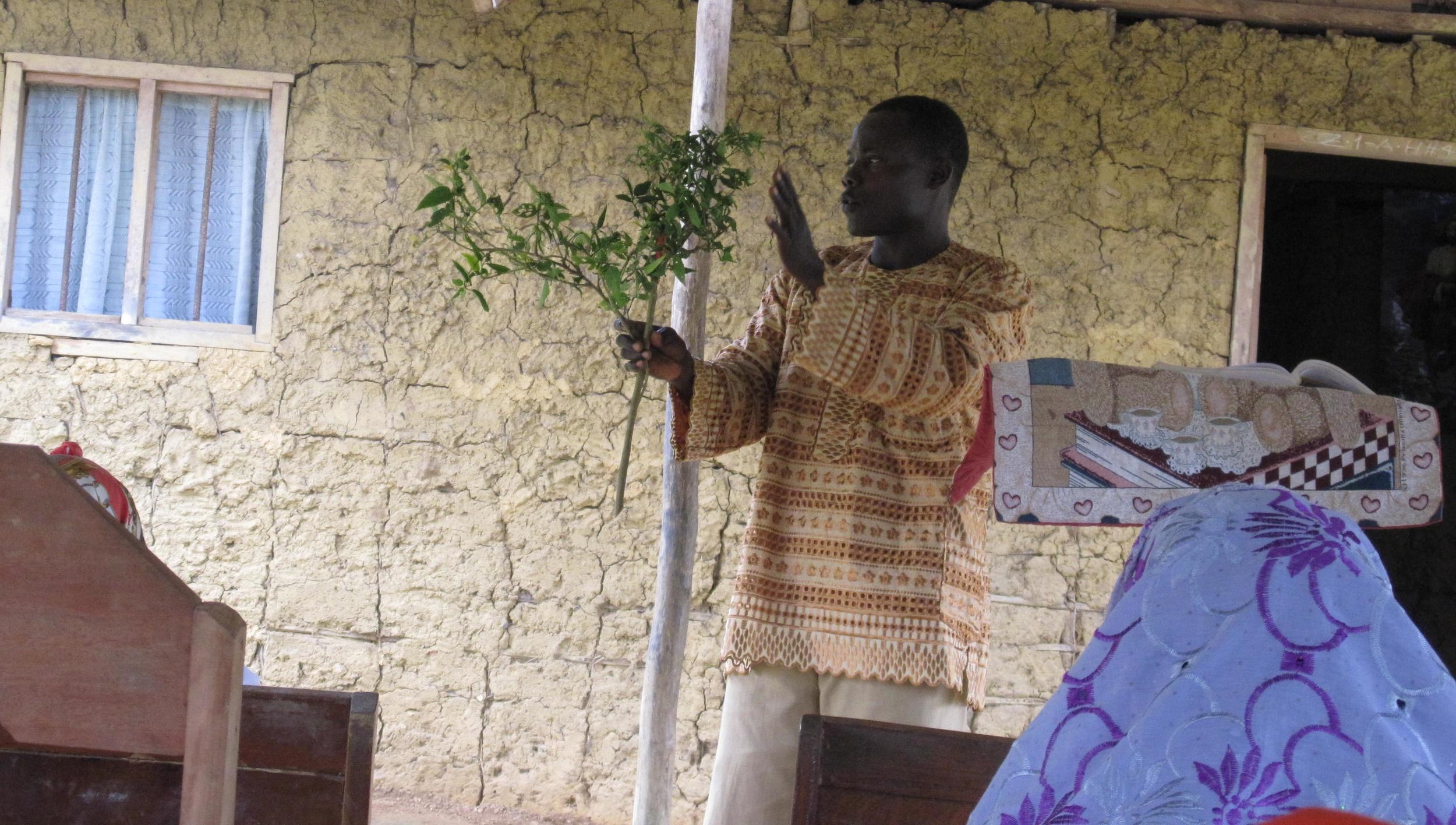 Liberia Jan 2014 029.jpg