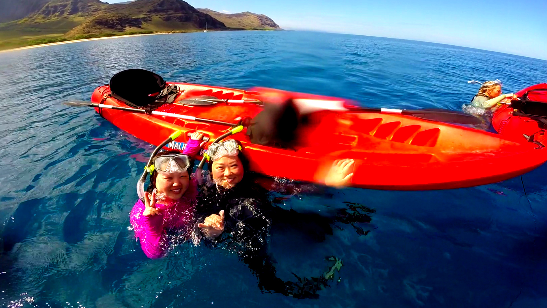 Jennifer & Elise Dolphin & Turtle 6-15-15.Still038.jpg