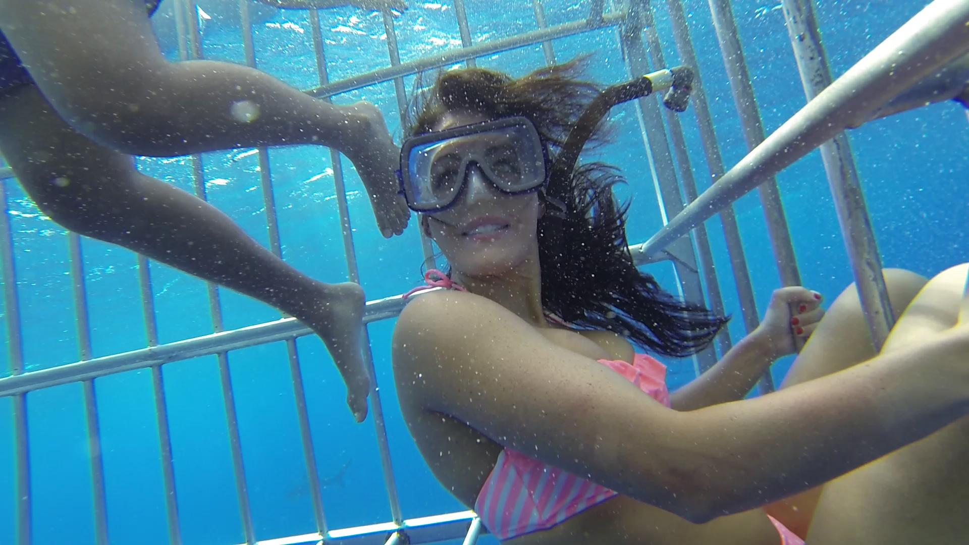 Lauren Shark Cage 12.Still012.jpg
