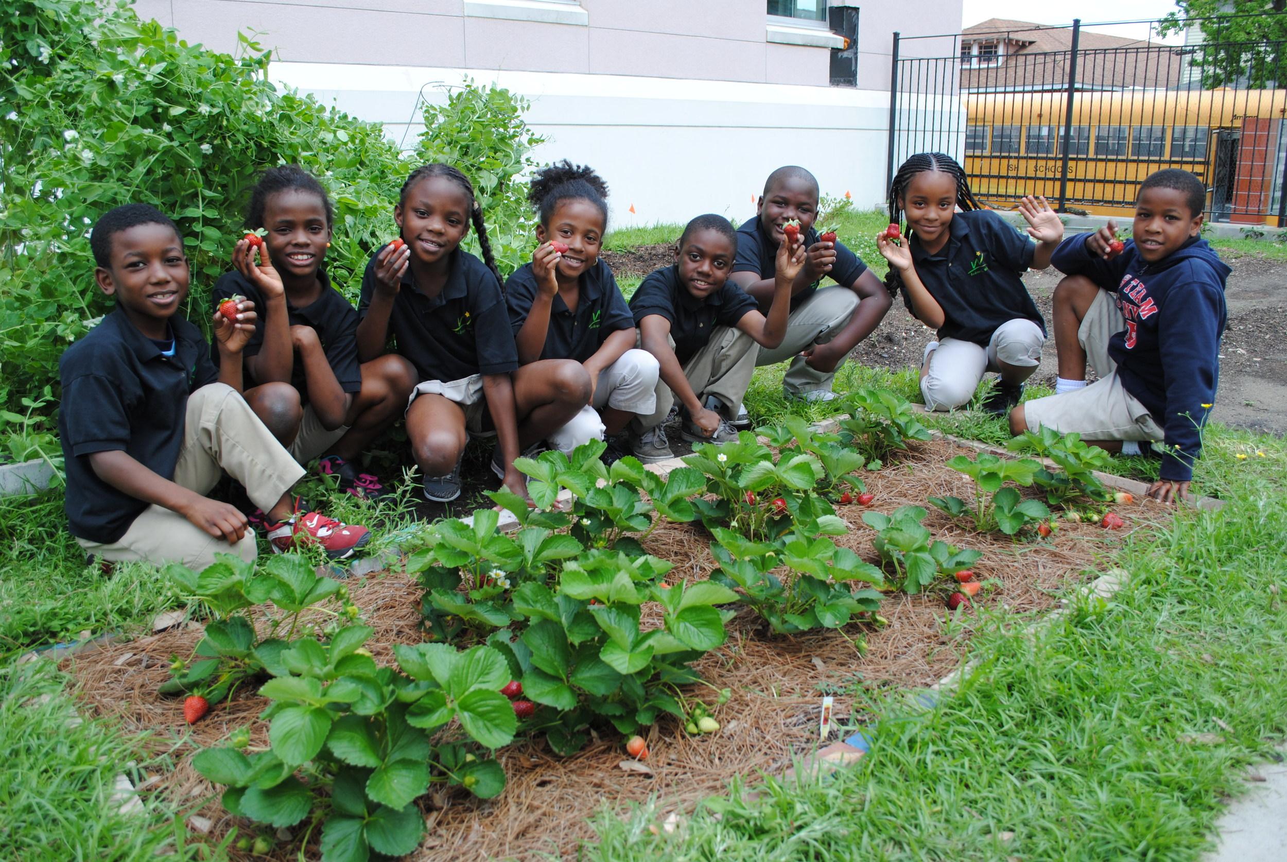 Wilson School garden, New Orleans, LA