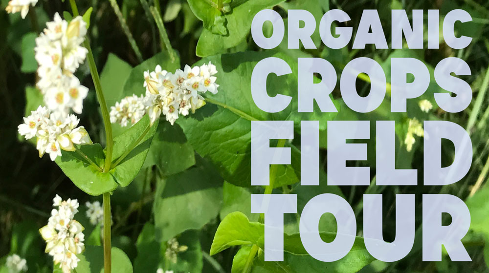 organic-crops-field-tour.jpg