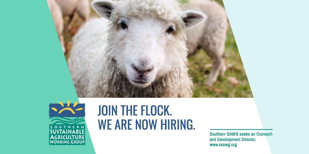 Join the Flock FB.jpg