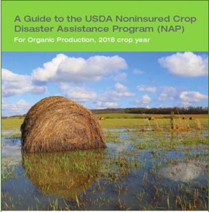 Disaster Assistance for Delayed Planting - USDA provides financial assistance to producers of noninsurable crops when low yields, loss of inventory, or prevented planting occur due to natural disasters. Learn more at:https://ofrf.org/news/help-delayed-planting
